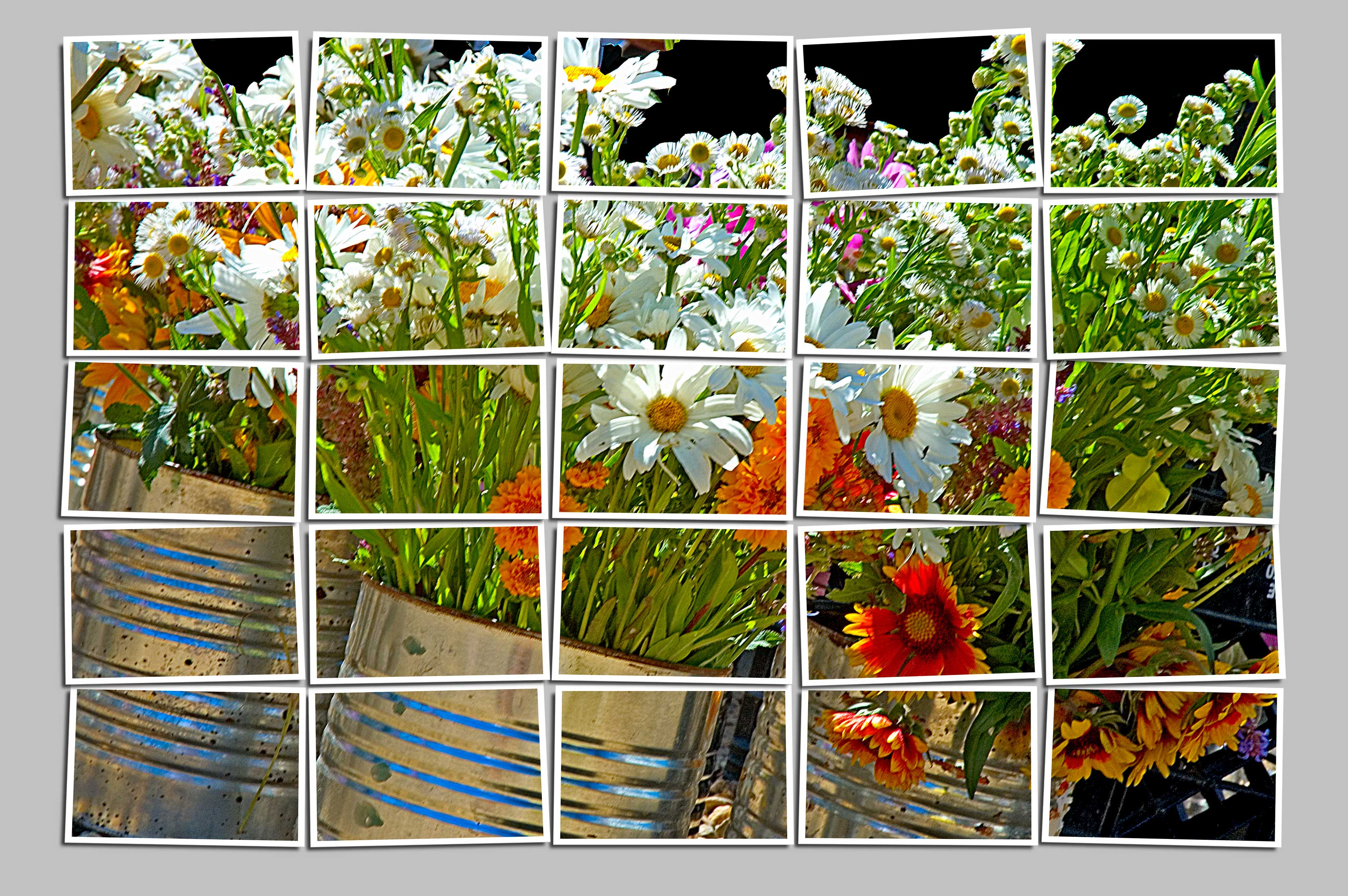 Flowers-in-cans-big-pix-m