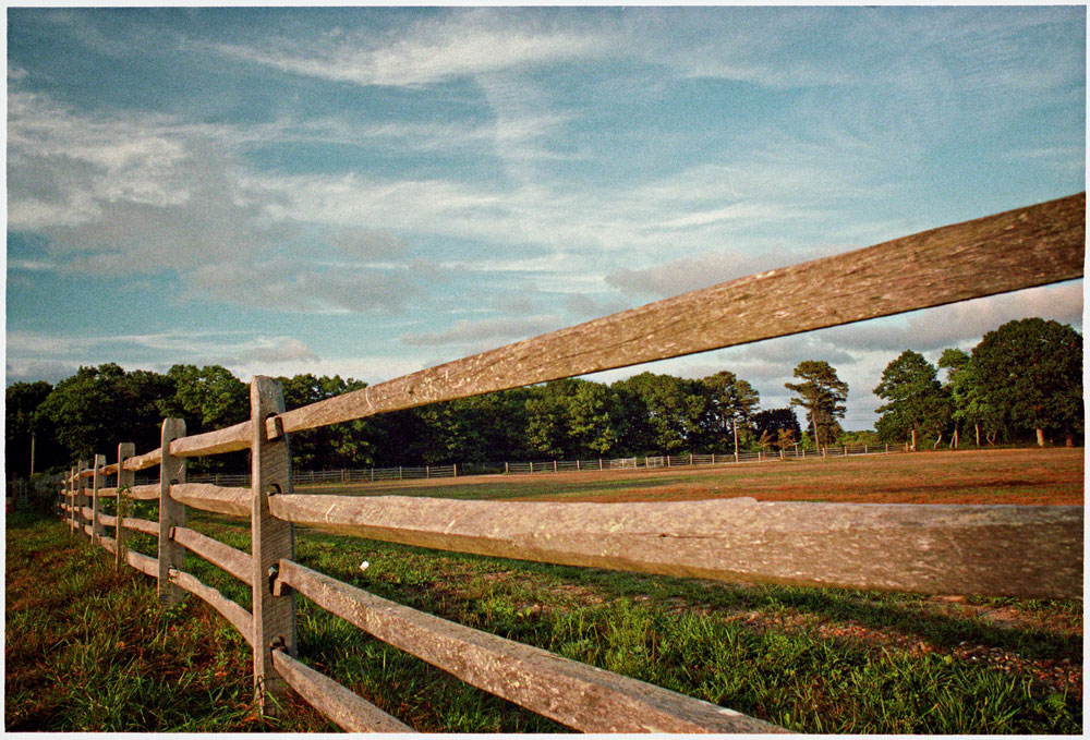 Fence-to-left-pe