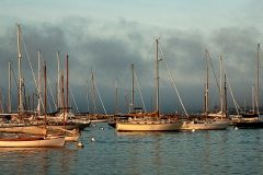 Tisbury Boats